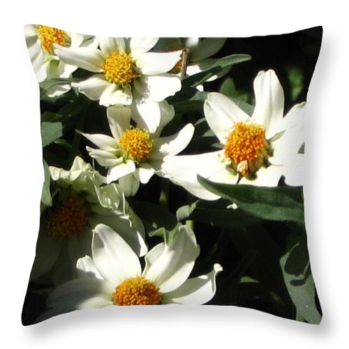 Floral Throw Pillow featuring the photograph Cascade Of White Flowers by Line Gagne