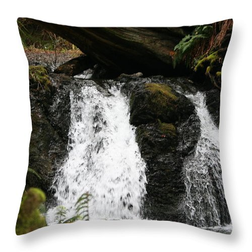 Waterfall Throw Pillow featuring the photograph Cascade Waterfalls Wf1003 by Mary Gaines