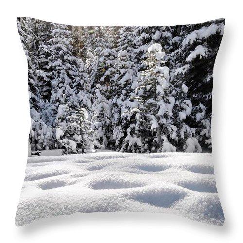 Sierra Nevadas Throw Pillow featuring the photograph Castle Peak Winterland by Mark Chandler
