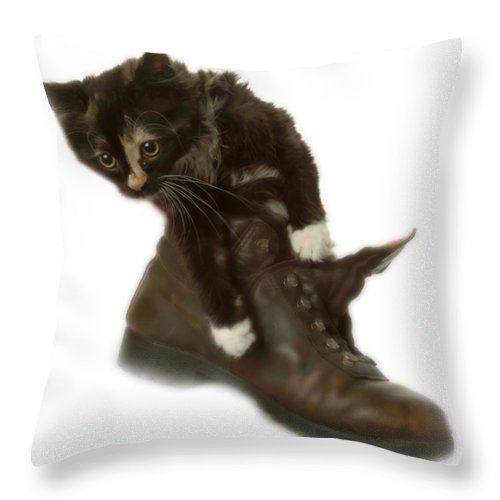 Throw Pillow featuring the photograph Cat In Boot by Cliff Norton