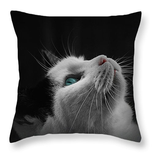 Cat Art Throw Pillow featuring the painting Cat Looking Up by Queso Espinosa