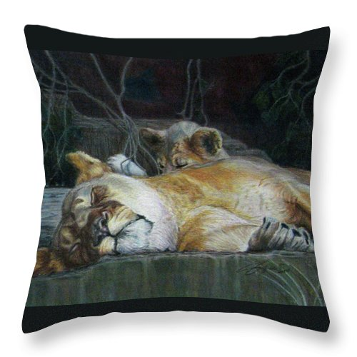 Fuqua - Artwork Throw Pillow featuring the drawing Cat Nap by Beverly Fuqua