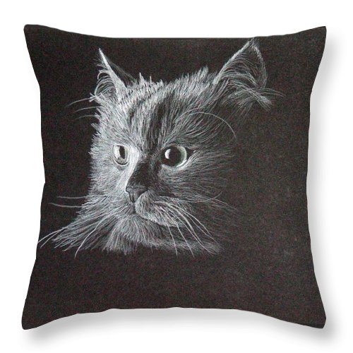 Cat Throw Pillow featuring the drawing Cat on Black by Brandy House