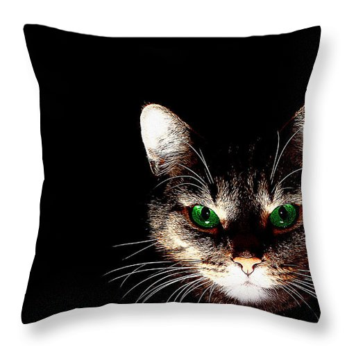 Cat Art Throw Pillow featuring the painting Cat Shadow by Queso Espinosa