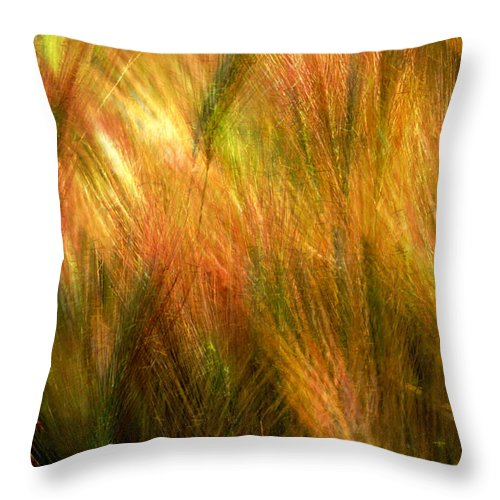 Abstract Throw Pillow featuring the photograph Cat Tails by Paul Wear