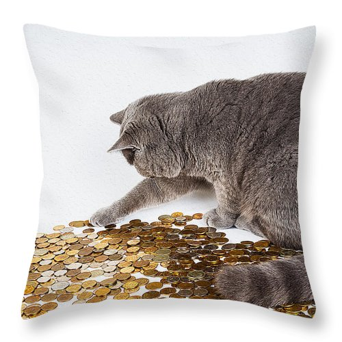 Cat Art Throw Pillow featuring the painting Cat With Coins by Queso Espinosa