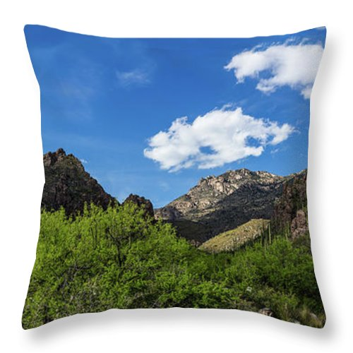 Tucson Throw Pillow featuring the photograph Catalina Mountains In Tucson Arizona by Billy Bateman
