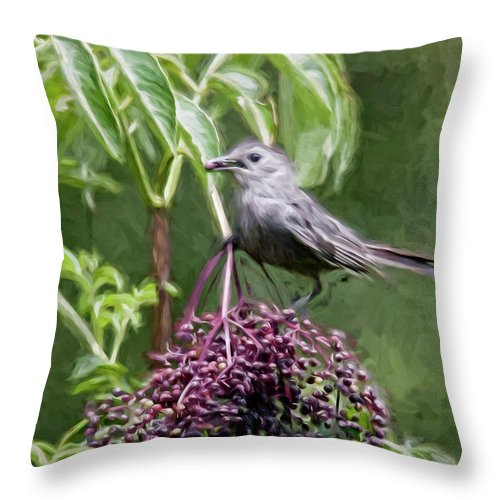 Digital Painting Throw Pillow featuring the digital art Catbird by Dawn J Benko