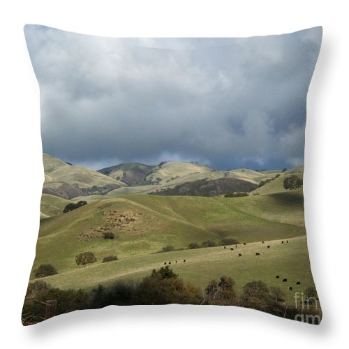 Artoffoxvox Throw Pillow featuring the photograph Cattle And Countryside Photograph by Kristen Fox