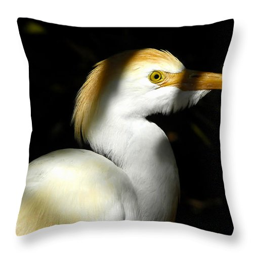 Cattle Egret Throw Pillow featuring the photograph Cattle Egret In Shadow by David Lee Thompson