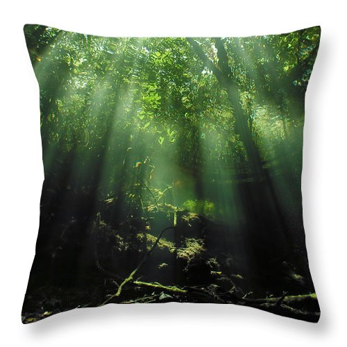 Scuba Throw Pillow featuring the photograph Cave Diving In Mexico by Christine Till