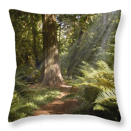 Nature Throw Pillow featuring the photograph Cedar Path by Sharon Foster