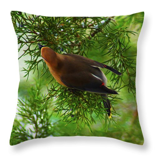 Birds Throw Pillow featuring the digital art Cedar Waxwing Beauties 1 by Kim Pate