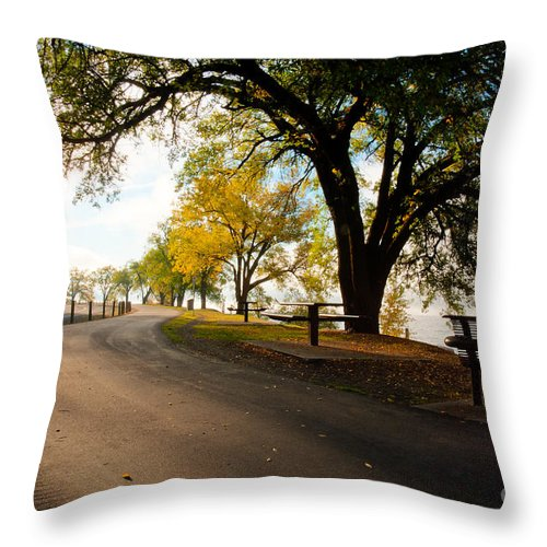 Idaho Throw Pillow featuring the photograph Centennial Trail by Idaho Scenic Images Linda Lantzy