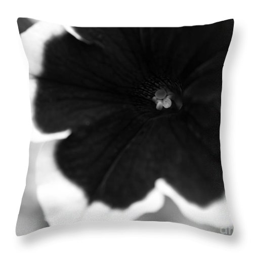 Floral Throw Pillow featuring the photograph Centered by Amanda Barcon