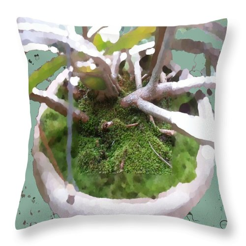 Square Throw Pillow featuring the digital art Central Fixation by Eikoni Images