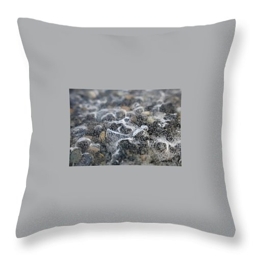 Pebbles Throw Pillow featuring the photograph Champagne Cold by Christopher Wilson
