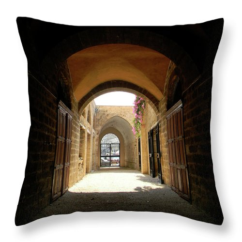 Marwan Throw Pillow featuring the photograph Chaos Beyond The Gate by Marwan George Khoury