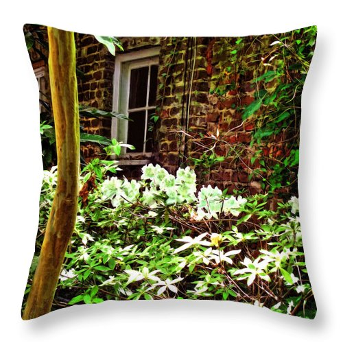 Charleston Art Throw Pillow featuring the digital art Charleston Alley Window by Joan Minchak