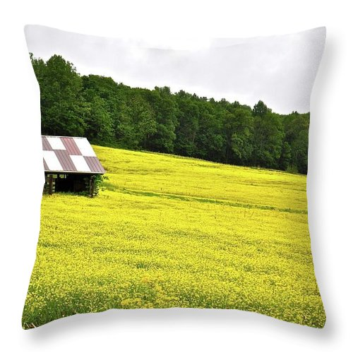 Farm Throw Pillow featuring the photograph Checkerboard Square by Jim Browder