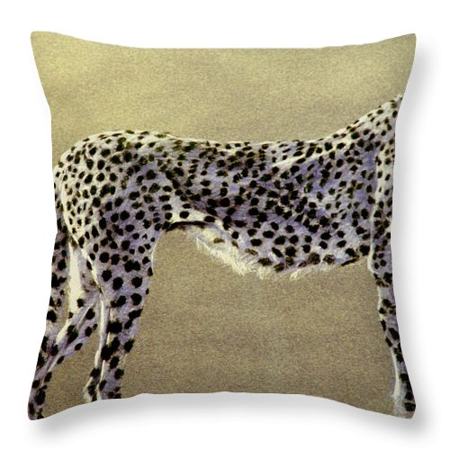 Wildlife Throw Pillow featuring the drawing Cheetah by Paul Miller