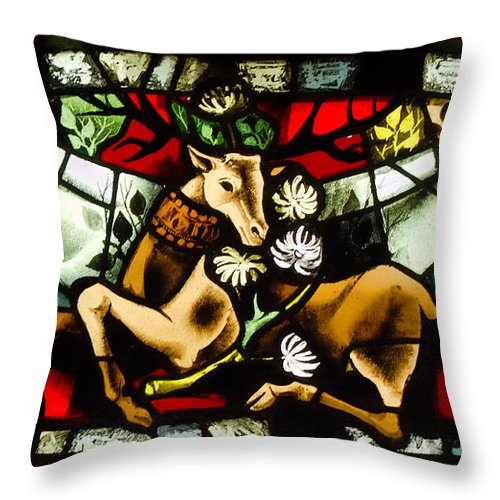 Stained Glass Throw Pillow featuring the photograph Chenonceau Stained Glass by Nigel Fletcher-Jones