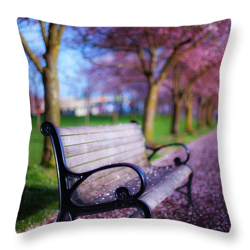 Spring Throw Pillow featuring the photograph Cherry Blossom Bench by Darren White