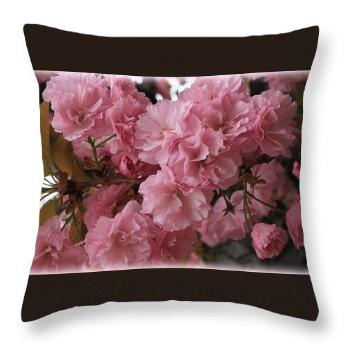 Macro Throw Pillow featuring the photograph Cherry Blossoms by Dora Sofia Caputo Photographic Design and Fine Art