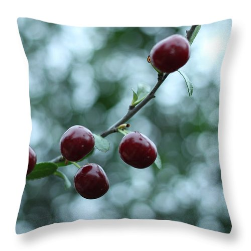 Cherries Throw Pillow featuring the photograph Cherry Constellation by Igor Zharkov