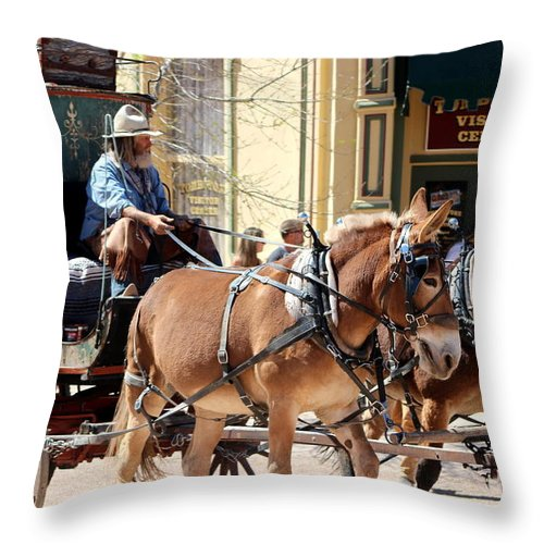 Chestnut Horses Pulling Carriage Throw Pillow featuring the photograph Chestnut Horses Pulling Carriage by Colleen Cornelius