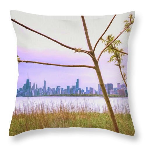 Cityscape Throw Pillow featuring the photograph Chicago Skyline - The View From Montrose Point by Wes Iversen