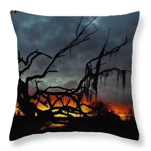 Florida Sunset Throw Pillow featuring the photograph Chilling Sunset by Barbara Bowen