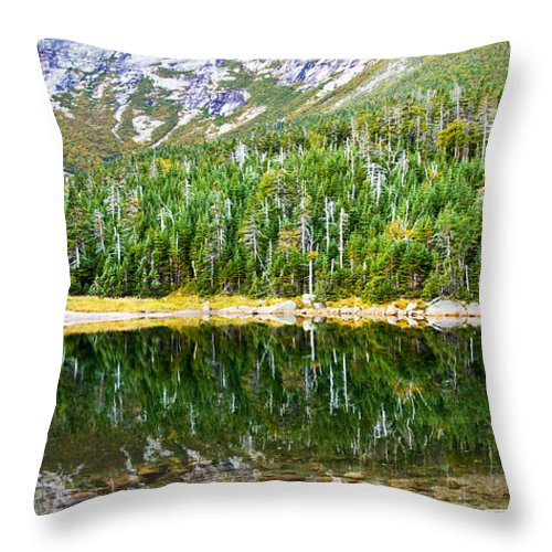 Chimney Pond Throw Pillow featuring the photograph Chimney Pond Reflections 2 by Glenn Gordon