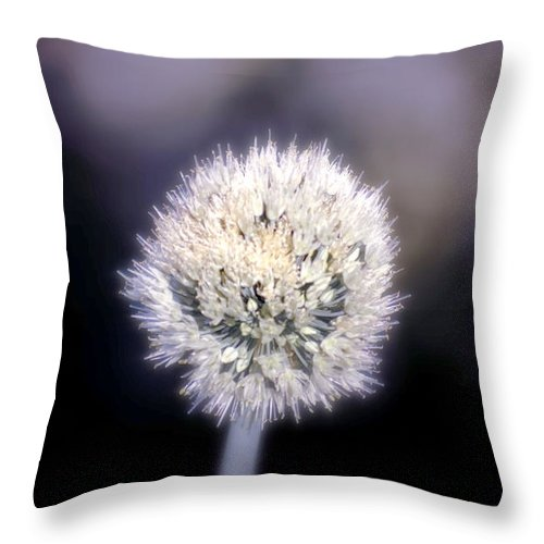 Chive Throw Pillow featuring the photograph Chive by Holly Kempe