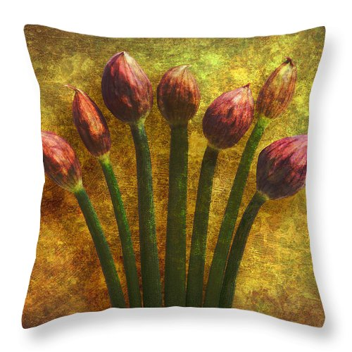 Texture Throw Pillow featuring the digital art Chives Buds by Digital Crafts
