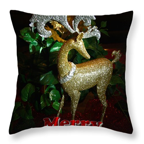 Christmas Card Throw Pillow featuring the photograph Christmas Card by Chris Brannen