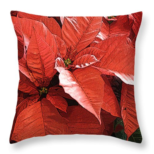 California Images Throw Pillow featuring the photograph Christmas In July by Norman Andrus