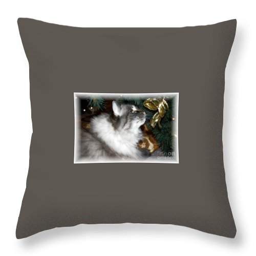 Christmas Throw Pillow featuring the photograph Christmas Kitty by Debbi Granruth