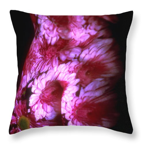 Nature Fusion Throw Pillow featuring the photograph Chrysanthemum by Arla Patch