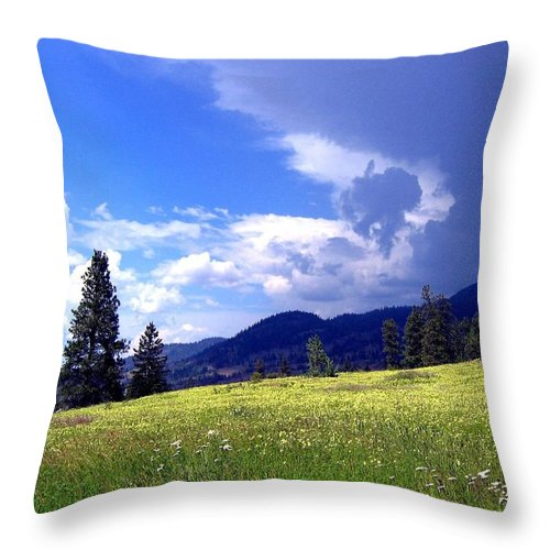 Cinquefoil Throw Pillow featuring the photograph Cinquefoil Blossoms by Will Borden