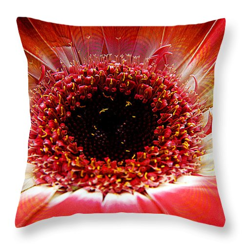 Clay Throw Pillow featuring the photograph Circumvent by Clayton Bruster