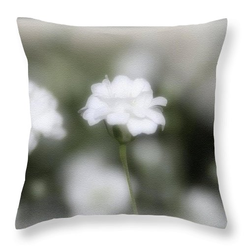 Flowers Throw Pillow featuring the photograph Classic White by Linda Sannuti