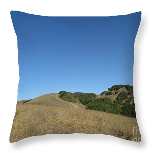 Landscape Throw Pillow featuring the photograph Clear Day by Suzanne Leonard