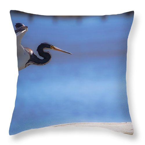 Bird Throw Pillow featuring the digital art Cleared For Landing by DigiArt Diaries by Vicky B Fuller