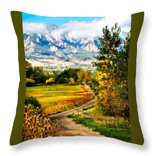 Americana Throw Pillow featuring the photograph Clearly Colorado by Marilyn Hunt