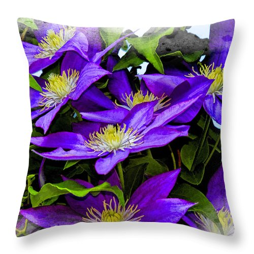 Recent Throw Pillow featuring the photograph Clematis by Geraldine Scull