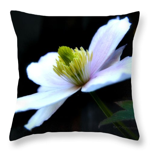 Clematis Throw Pillow featuring the photograph Clematis by Mimulux patricia No