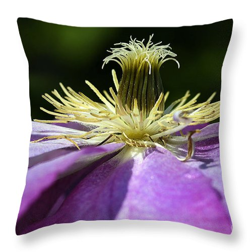 Flower Throw Pillow featuring the photograph Clementas by Deborah Benoit