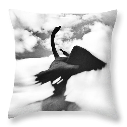 Swan Throw Pillow featuring the photograph Swans In Love by Svetlana Batalina
