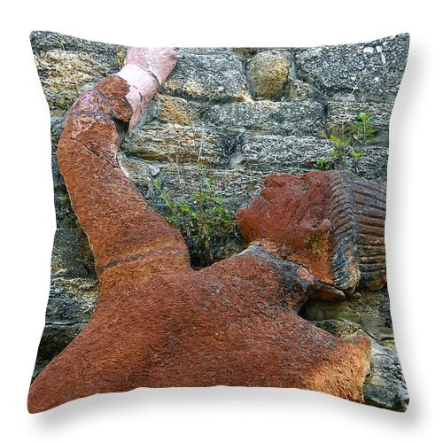 Tomoka State Park Throw Pillow featuring the photograph Climbing To Tomoka by David Lee Thompson